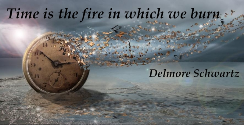 Time is the fire in which we burn. (Delmore Schwartz)