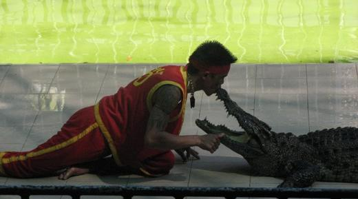 Kiss with crocodile