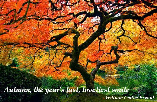 Autumn, the year's last, loveliest smile. (William Cullen Bryant)