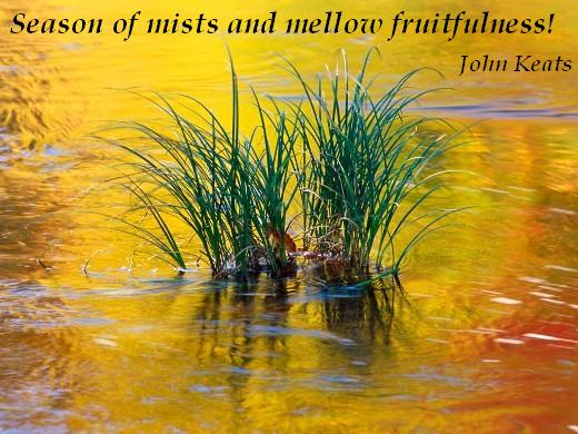 Season of mists and mellow fruitfulness! (John Keats)