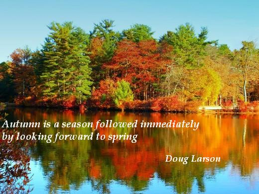 Autumn is a season followed immediately by looking forward to spring. (Doug Larson)