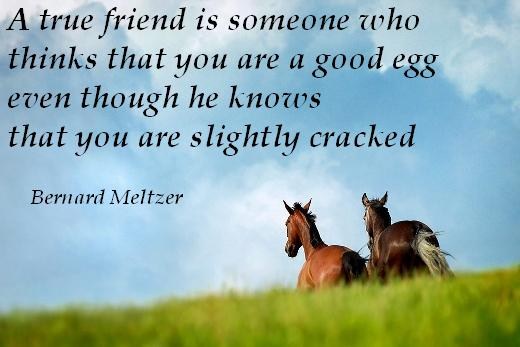A true friend is someone who thinks that you are a good egg even though he knows that you are slightly cracked - Bernard Meltzer