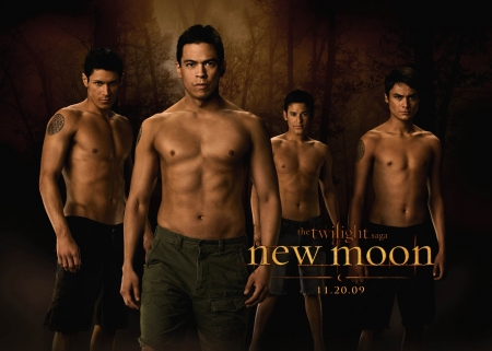 Werewolves: Sam Uley (Chaske Spencer), Jared (Bronson Pelletier), Paul (Alex Meraz), Embry Call (Kiowa Gordon)