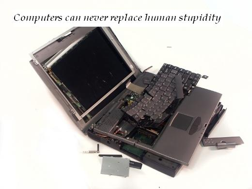 Computers can never replace human stupidity