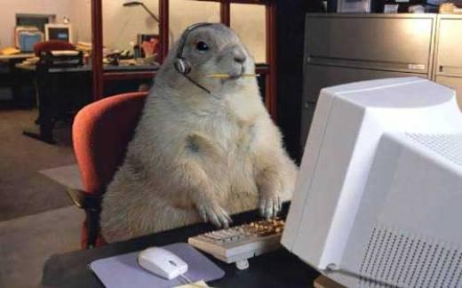 Funny computer animal
