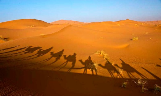 The Sahara is the world's largest and hottest desert