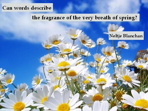 Can words describe the fragrance of the very breath of spring? - Neltje Blanchan