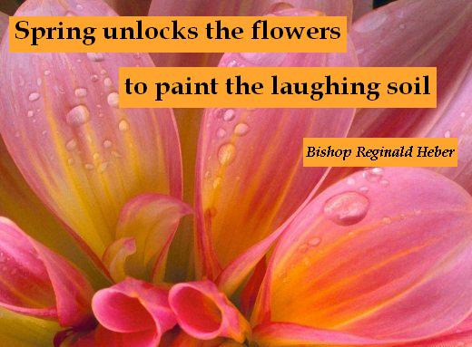 Spring unlocks the flowers to paint the laughing soil - Bishop Reginald Heber
