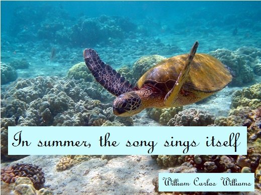 In summer, the song sings itself. (William Carlos Williams)
