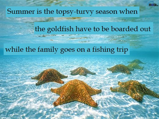 Summer is the topsy-turvy season when the goldfish have to be boarded out while the family goes on a fishing trip.