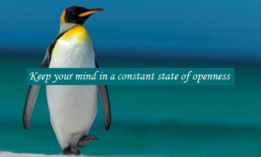 Keep your mind in a constant state of openness