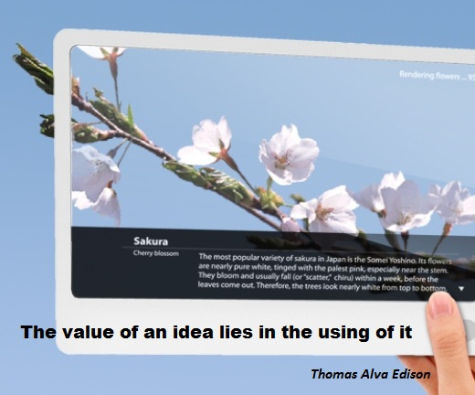 The value of an idea lies in the using of it. (Thomas Alva Edison)