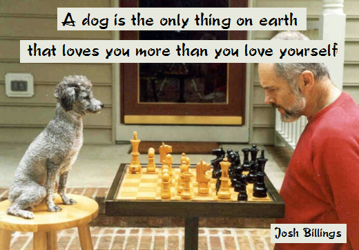 A dog is the only thing on earth that loves you more than you love yourself (Josh Billings)