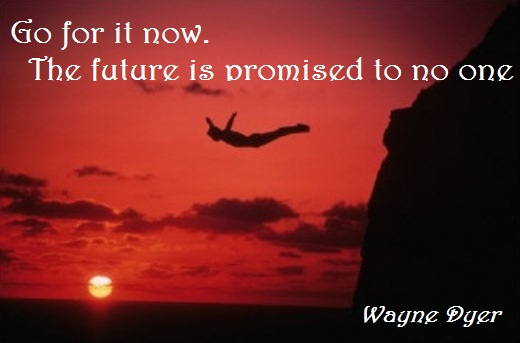 Go for it now. The future is promised to no one.  (Wayne Dyer)